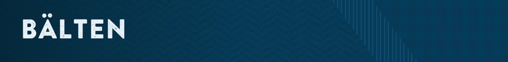 bälten-dambälten-märkesbälten-outlet